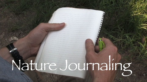 Nature Journaling